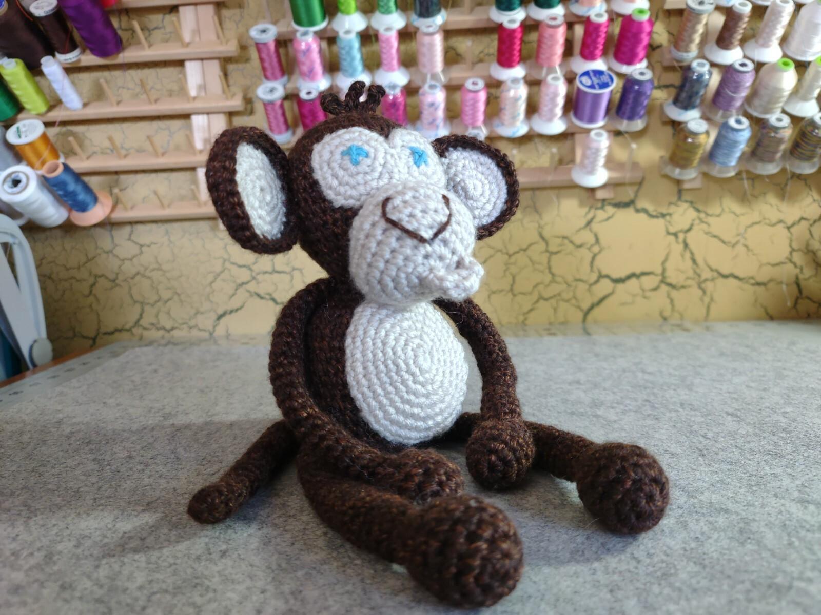 Boy Baby Monkey